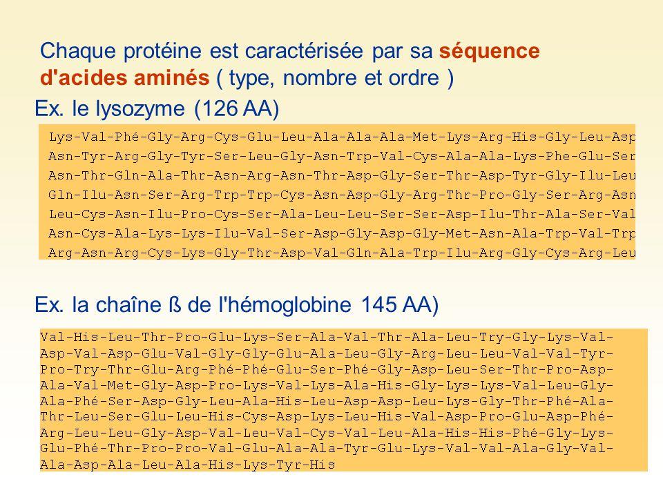 Chaque protéine est caractérisée par sa séquence d acides aminés ( type, nombre et ordre )