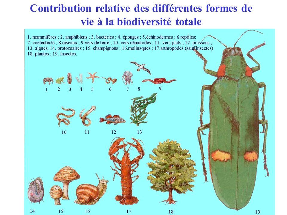Contribution relative des différentes formes de vie à la biodiversité totale