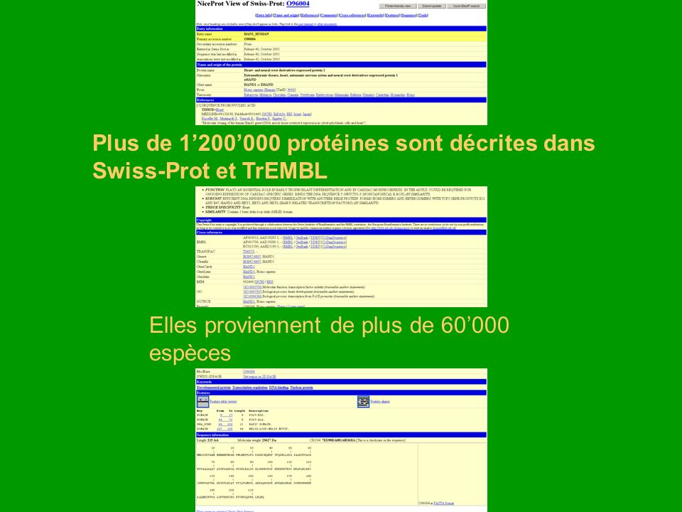 Plus de 1'200'000 protéines sont décrites dans Swiss-Prot et TrEMBL