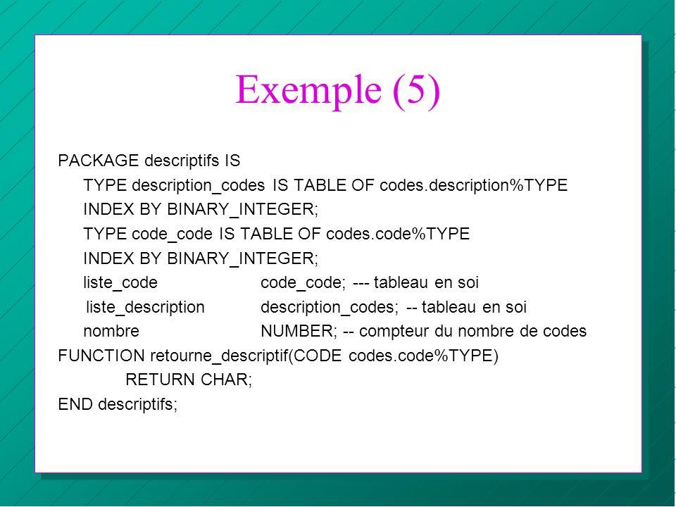 Exemple (5) PACKAGE descriptifs IS