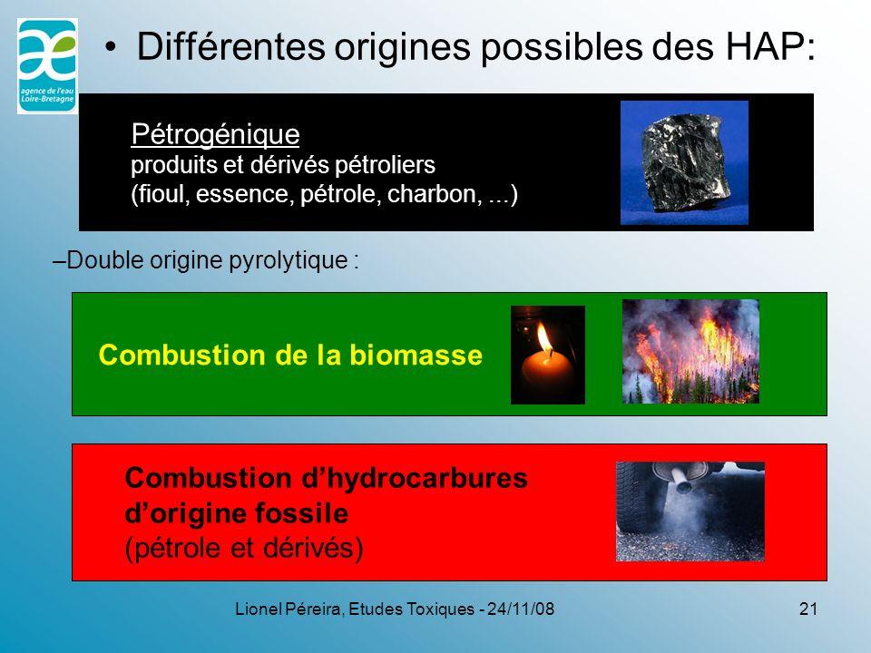 Lionel Péreira, Etudes Toxiques - 24/11/08