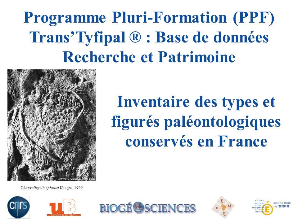 Inventaire des types et figurés paléontologiques conservés en France