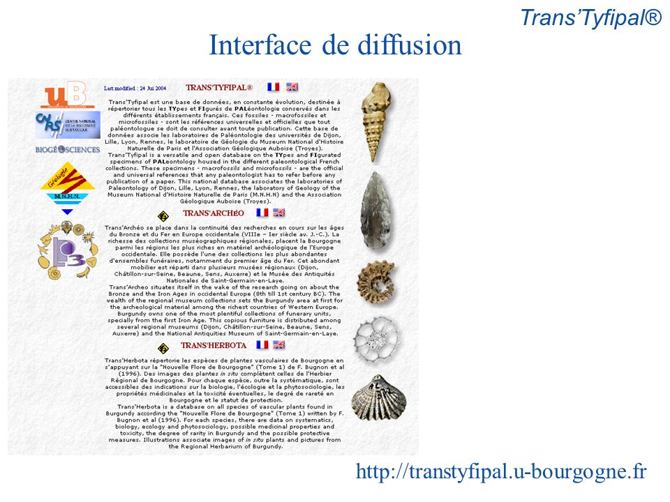 Interface de diffusion