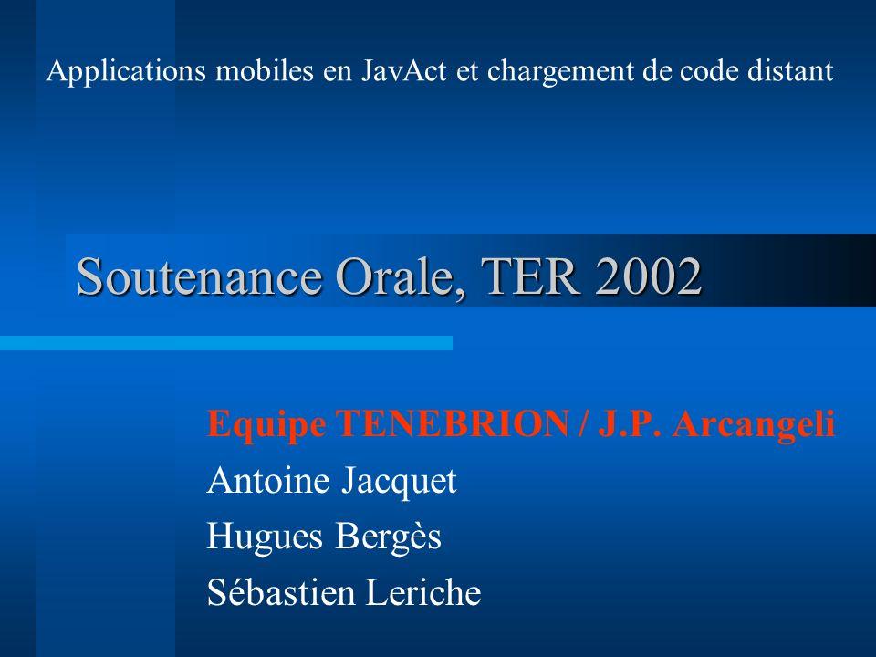 Soutenance Orale, TER 2002 Equipe TENEBRION / J.P. Arcangeli