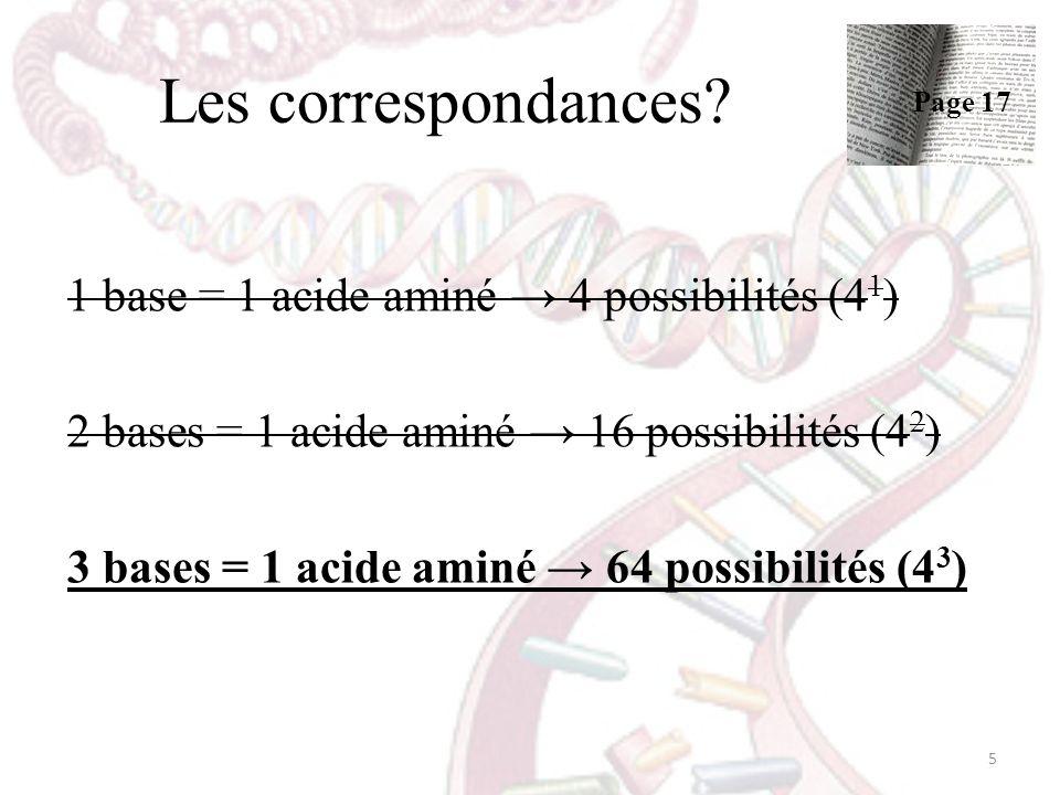 Les correspondances 1 base = 1 acide aminé → 4 possibilités (41)