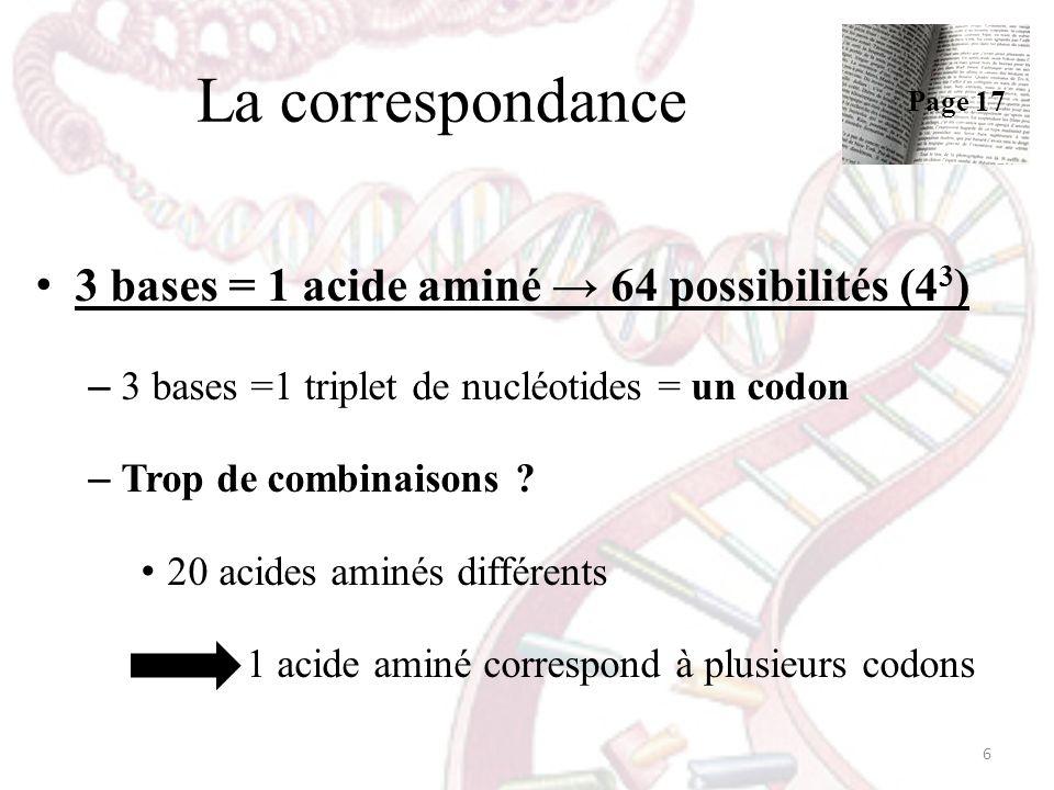 La correspondance 3 bases = 1 acide aminé → 64 possibilités (43)