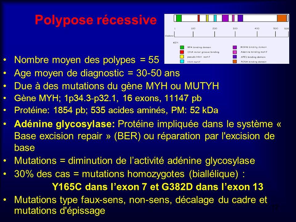 Polypose récessive Nombre moyen des polypes = 55