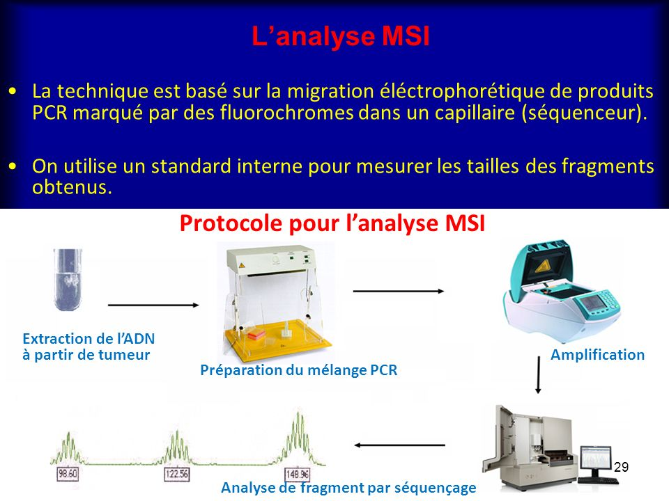 L'analyse MSI Protocole pour l'analyse MSI