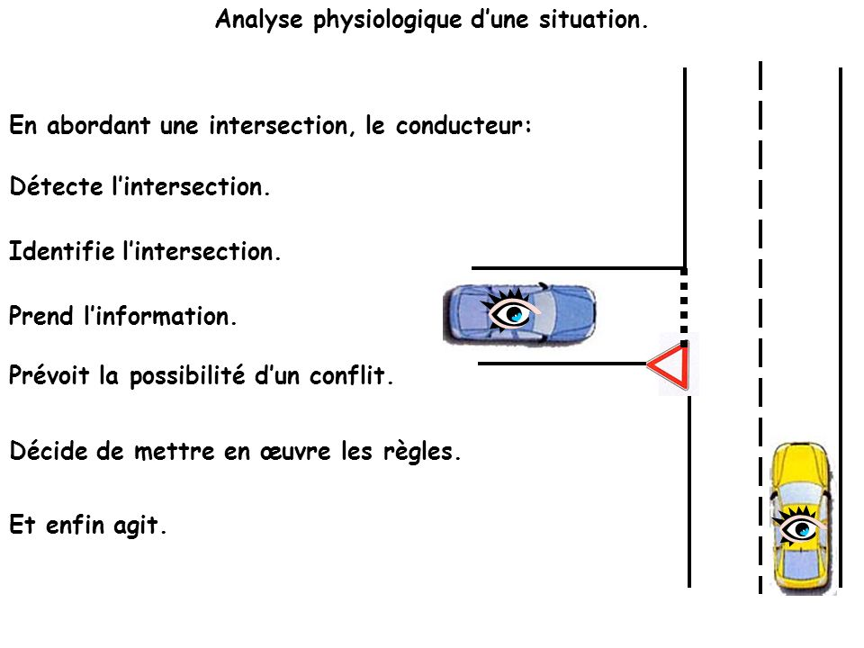 Analyse physiologique d'une situation.