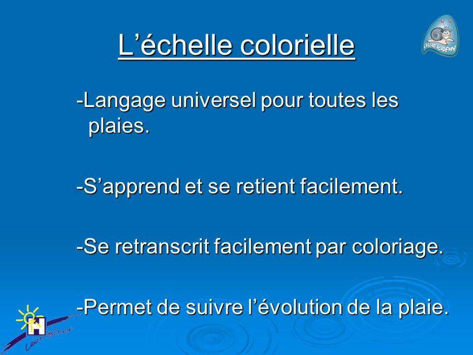L'échelle colorielle -Langage universel pour toutes les plaies.