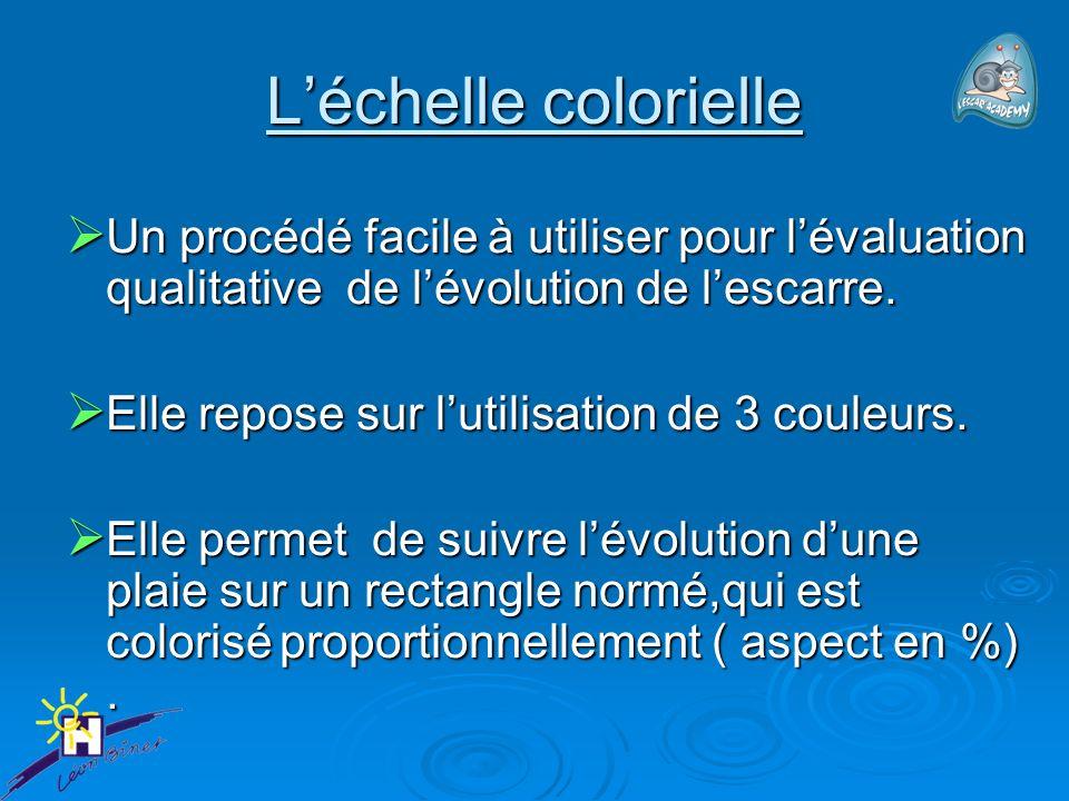 L'échelle colorielle Un procédé facile à utiliser pour l'évaluation qualitative de l'évolution de l'escarre.