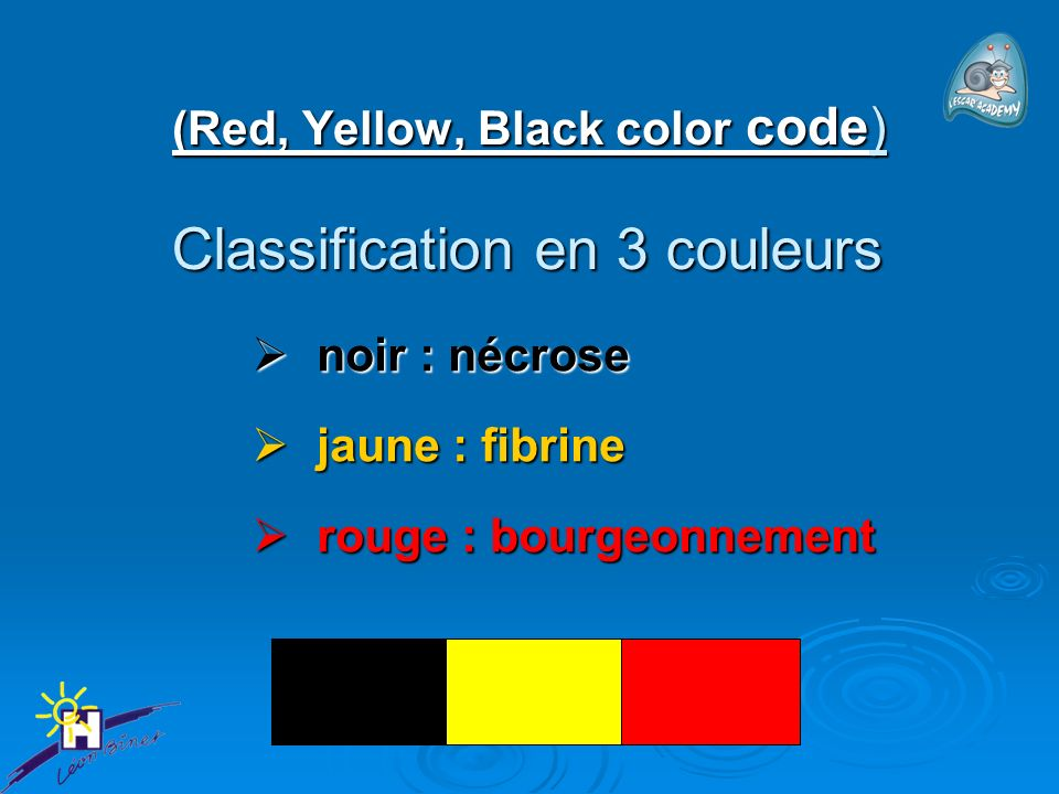 (Red, Yellow, Black color code)