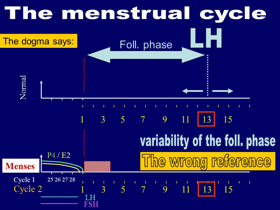 variability of the foll. phase