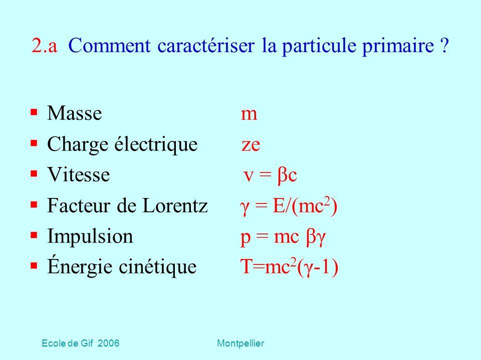 2.a Comment caractériser la particule primaire