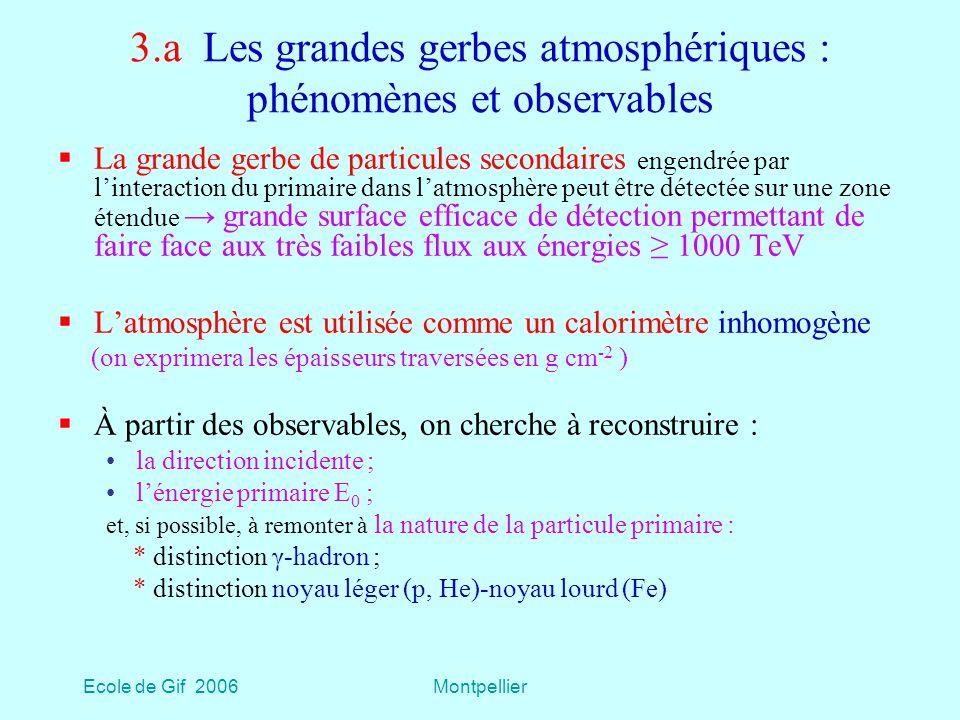 3.a Les grandes gerbes atmosphériques : phénomènes et observables