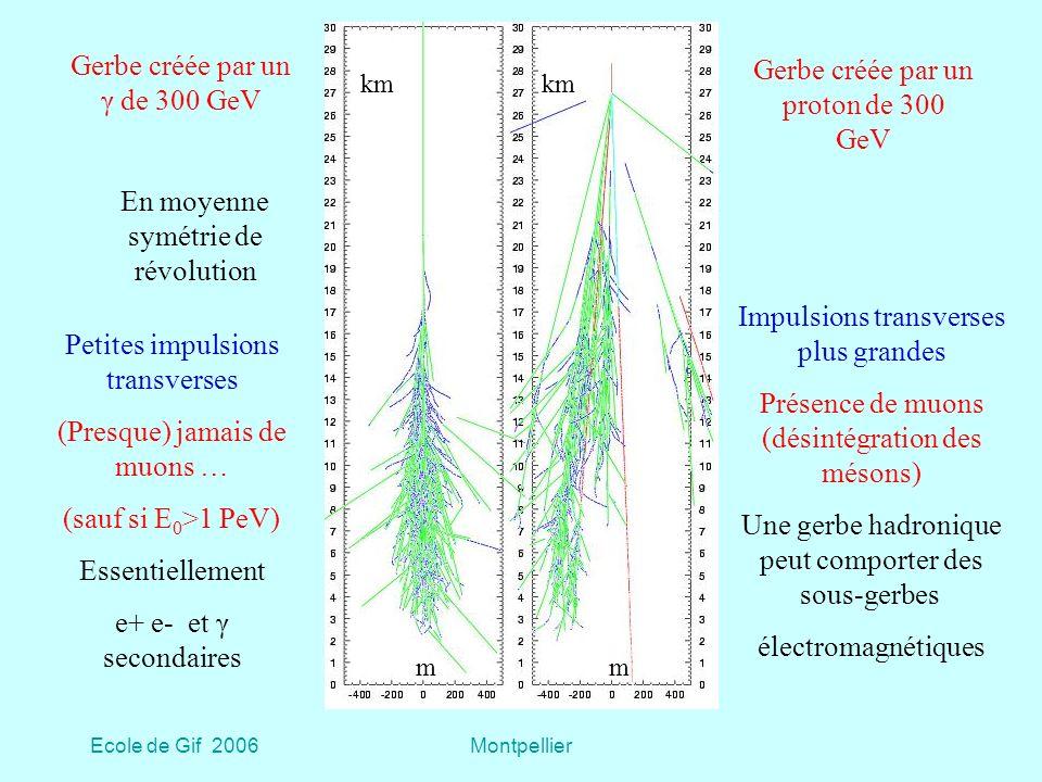 Gerbe créée par un γ de 300 GeV Gerbe créée par un proton de 300 GeV