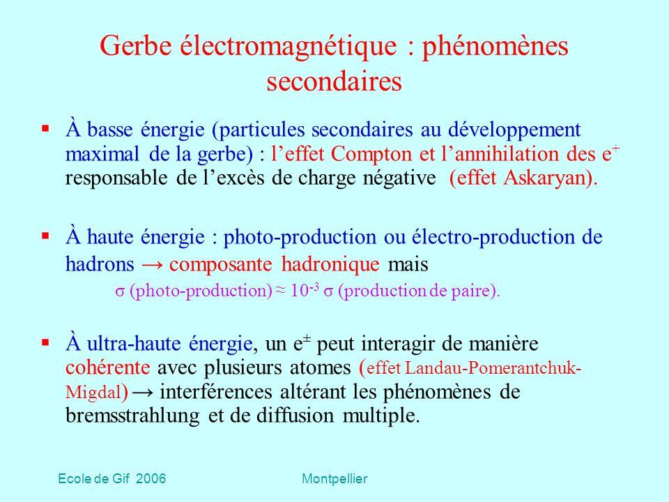 Gerbe électromagnétique : phénomènes secondaires