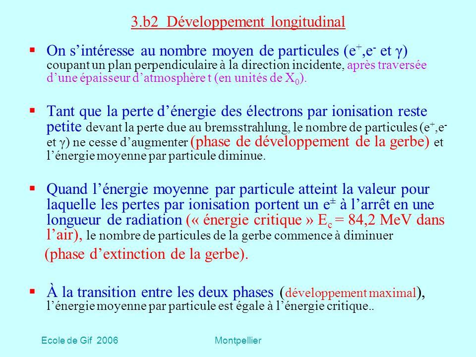 3.b2 Développement longitudinal