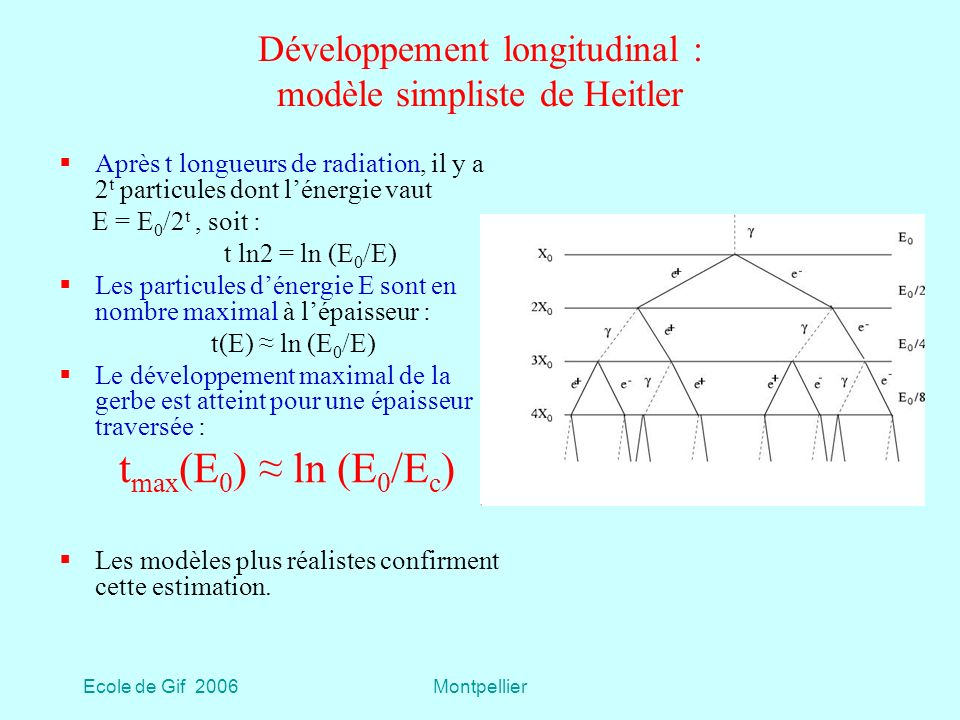 Développement longitudinal : modèle simpliste de Heitler