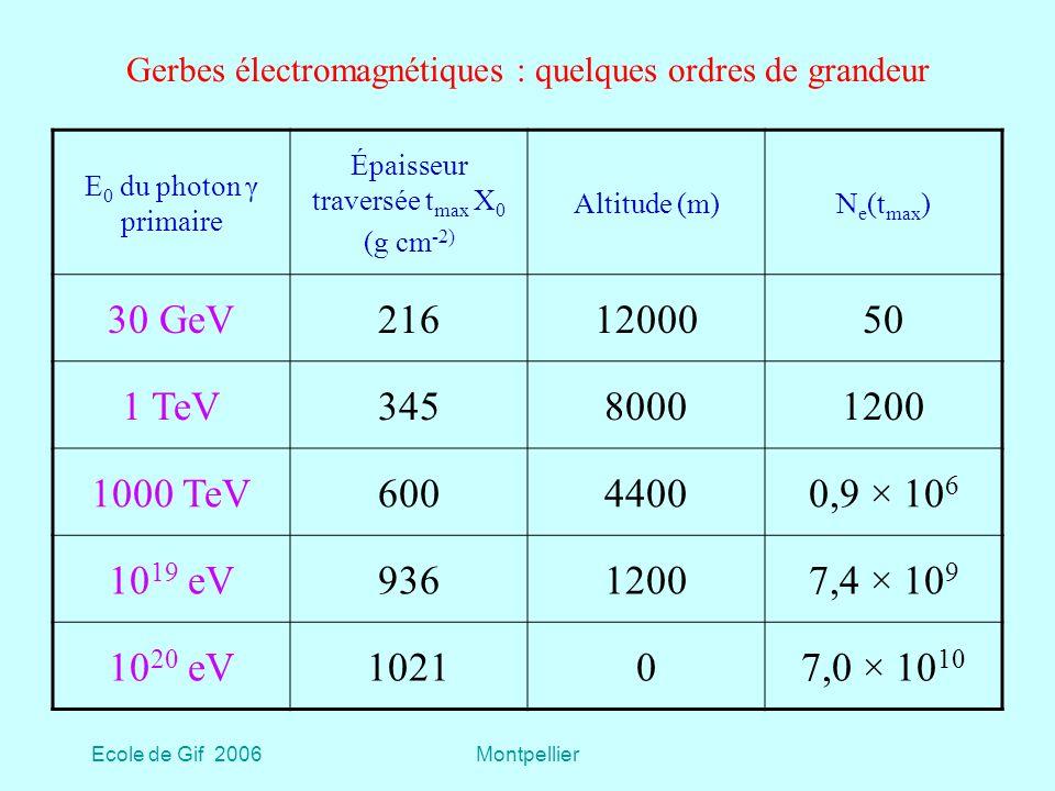Gerbes électromagnétiques : quelques ordres de grandeur