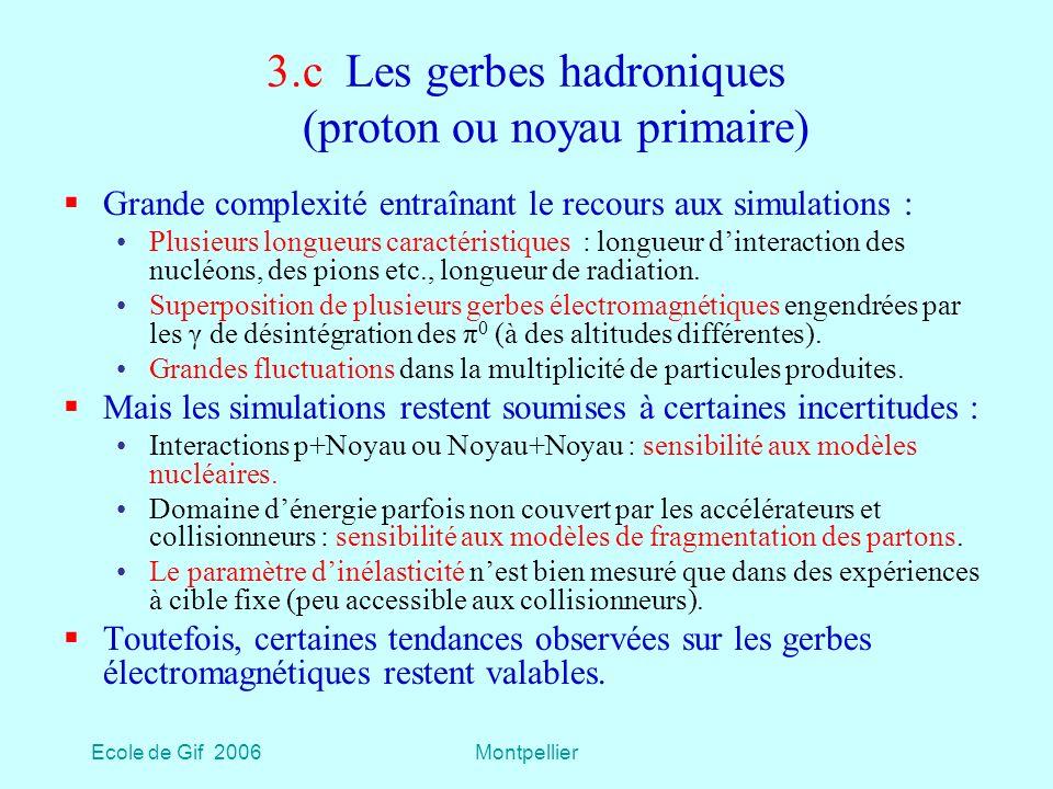 3.c Les gerbes hadroniques (proton ou noyau primaire)