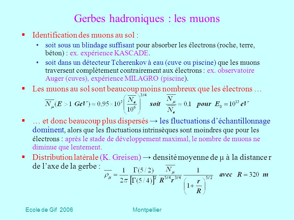 Gerbes hadroniques : les muons