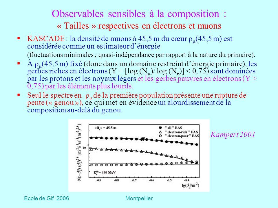 Observables sensibles à la composition : « Tailles » respectives en électrons et muons