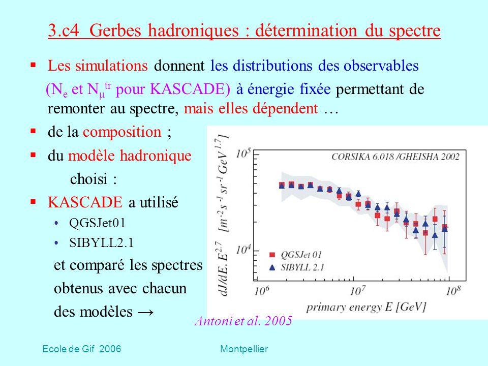 3.c4 Gerbes hadroniques : détermination du spectre