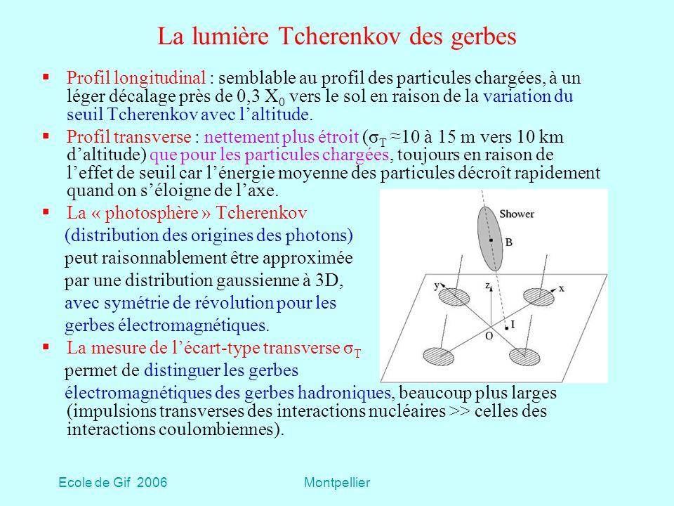 La lumière Tcherenkov des gerbes
