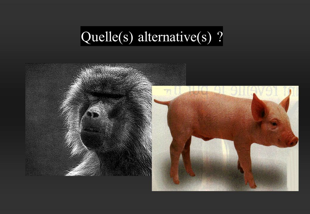 Quelle(s) alternative(s)