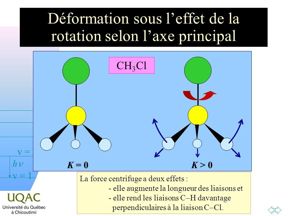 Déformation sous l'effet de la rotation selon l'axe principal