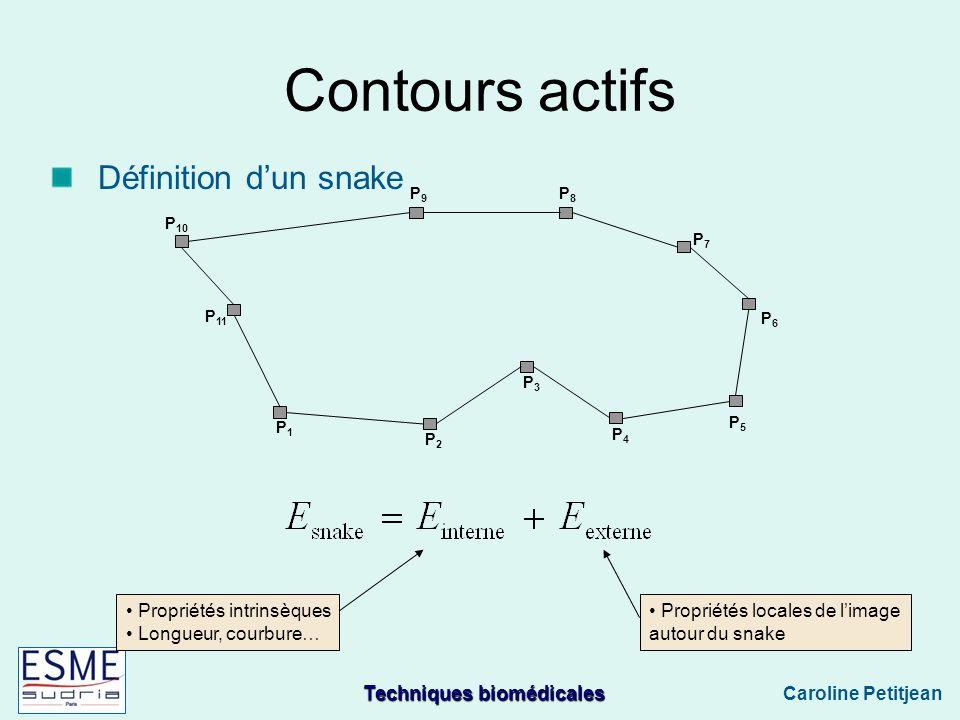 Contours actifs Définition d'un snake Propriétés intrinsèques