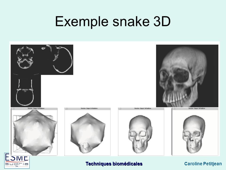 Exemple snake 3D