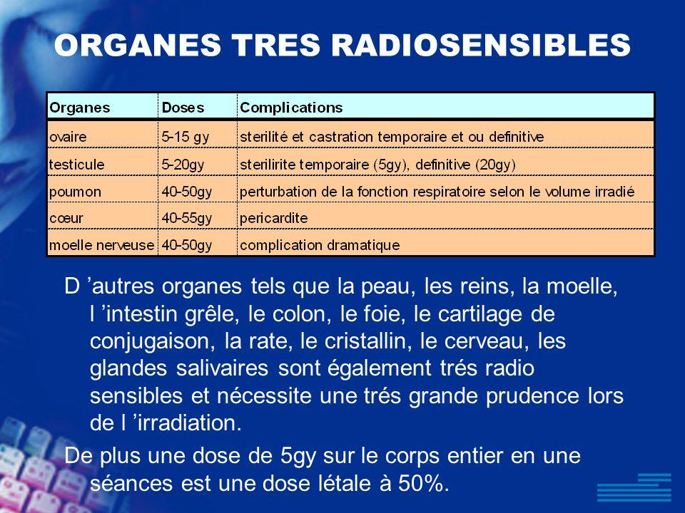 ORGANES TRES RADIOSENSIBLES