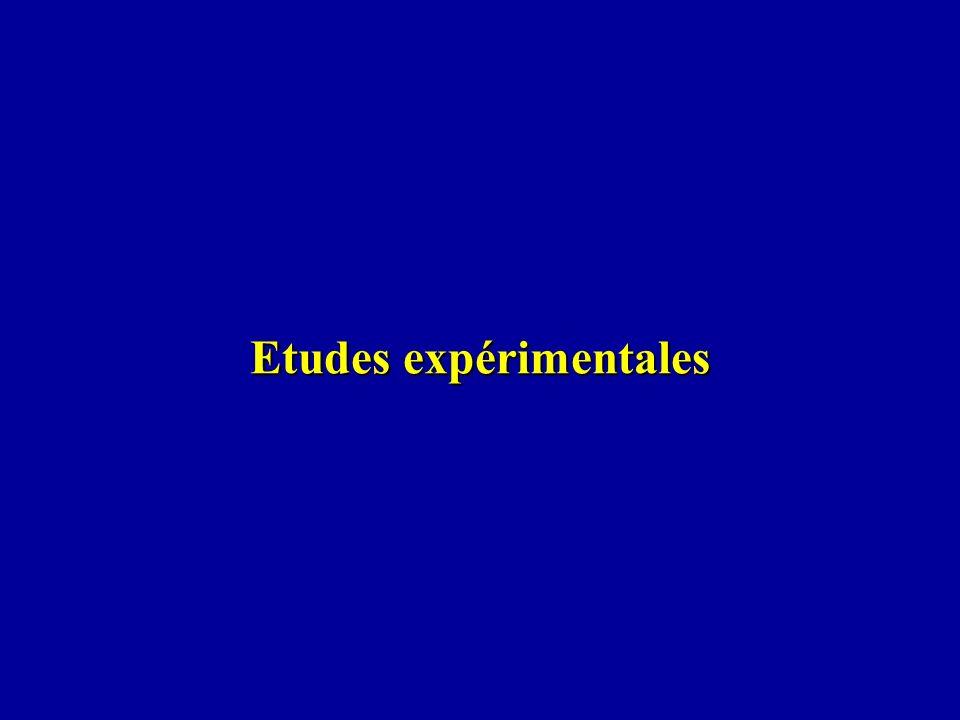 Etudes expérimentales