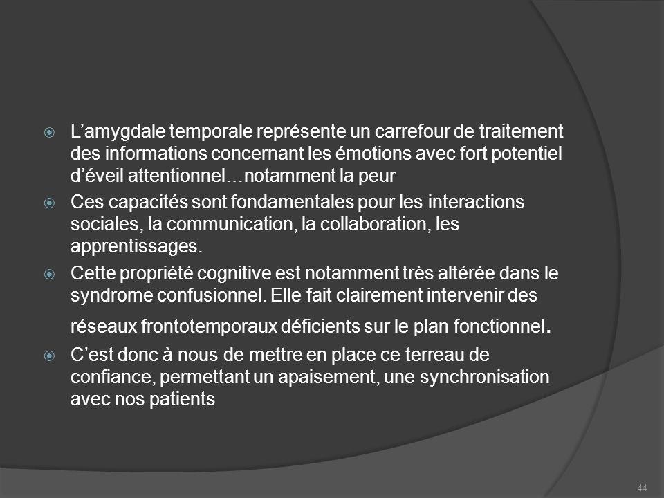 L'amygdale temporale représente un carrefour de traitement des informations concernant les émotions avec fort potentiel d'éveil attentionnel…notamment la peur