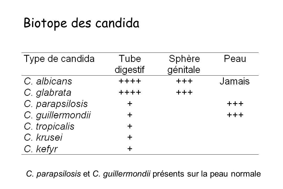 Biotope des candida C. parapsilosis et C. guillermondii présents sur la peau normale