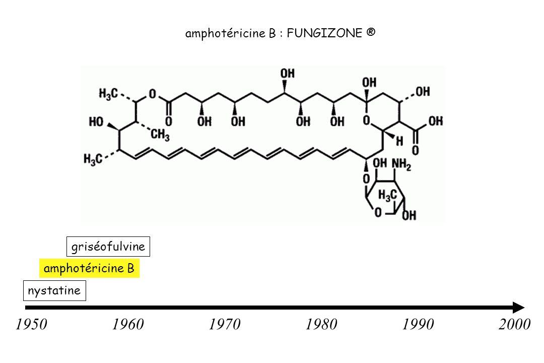 1950 1960 1970 1980 1990 2000 amphotéricine B : FUNGIZONE ®