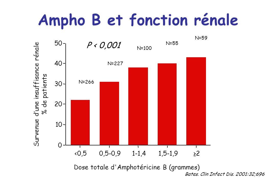 Ampho B et fonction rénale