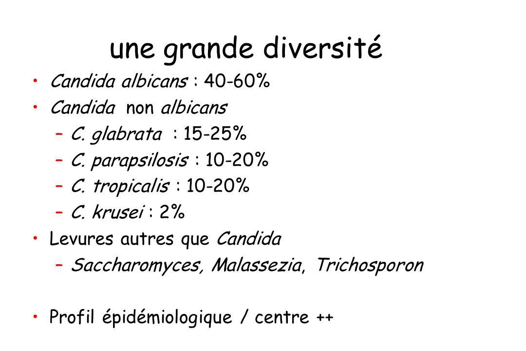 une grande diversité Candida albicans : 40-60% Candida non albicans