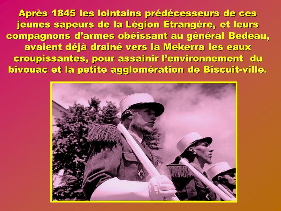 Après 1845 les lointains prédécesseurs de ces jeunes sapeurs de la Légion Etrangère, et leurs compagnons d'armes obéissant au général Bedeau, avaient déjà drainé vers la Mekerra les eaux croupissantes, pour assainir l'environnement du bivouac et la petite agglomération de Biscuit-ville.