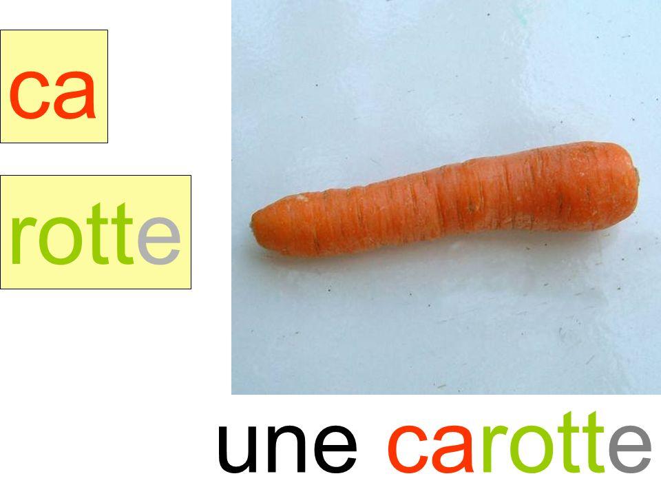 carotte ca rotte une carotte instit90