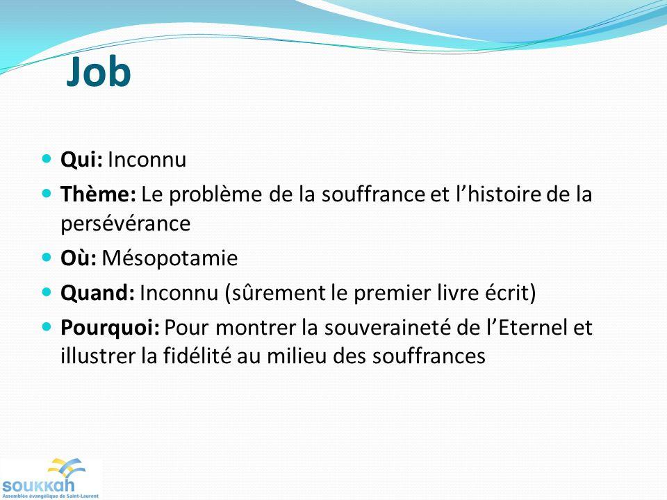 Job Qui: Inconnu. Thème: Le problème de la souffrance et l'histoire de la persévérance. Où: Mésopotamie.