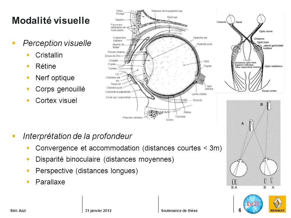 Modalité visuelle Perception visuelle Interprétation de la profondeur