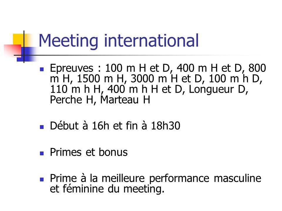 Meeting international