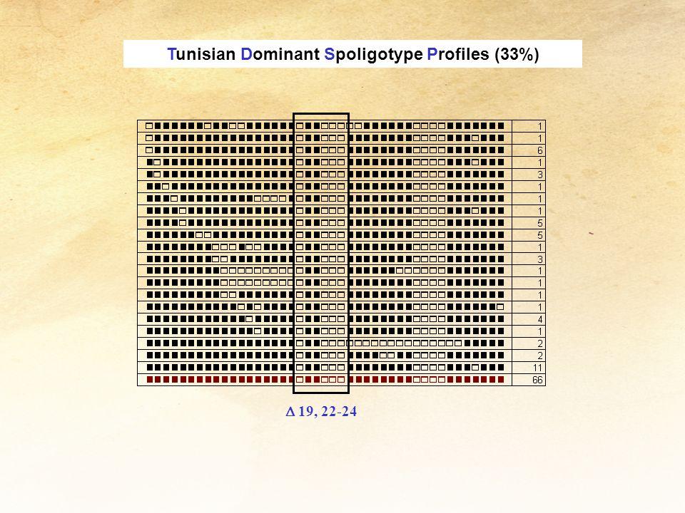 Tunisian Dominant Spoligotype Profiles (33%)