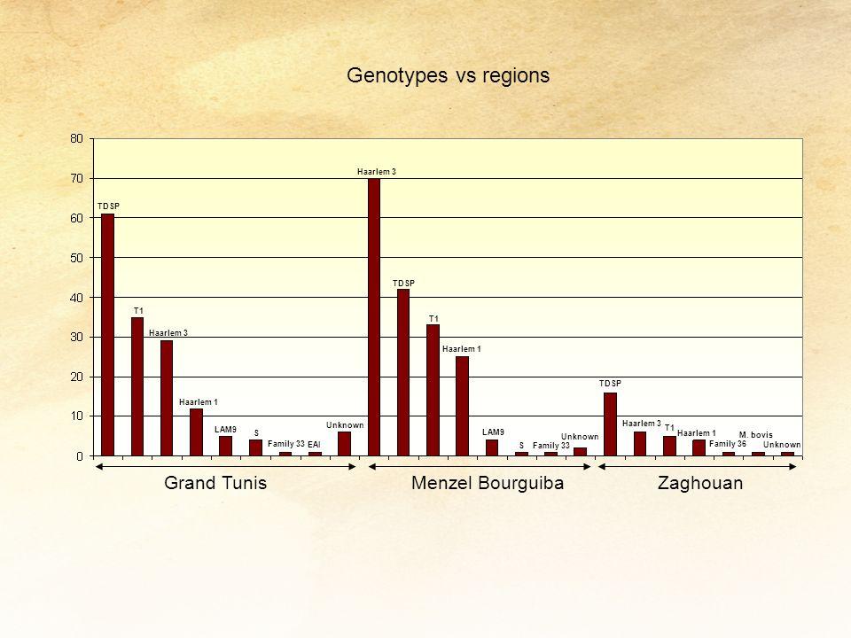 Genotypes vs regions Grand Tunis Menzel Bourguiba Zaghouan Haarlem 3
