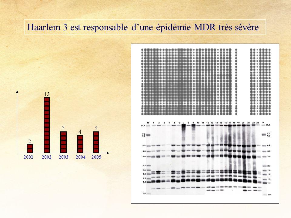 Haarlem 3 est responsable d'une épidémie MDR très sévère