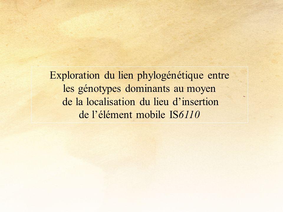 Exploration du lien phylogénétique entre