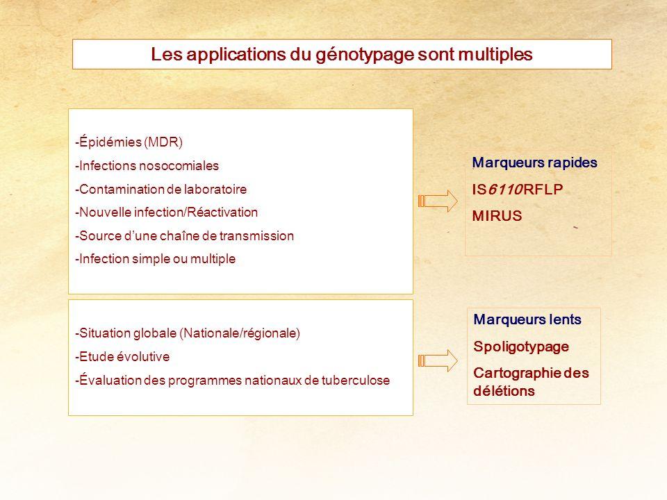 Les applications du génotypage sont multiples